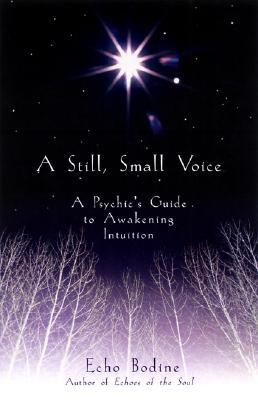 A Still, Small Voice by Echo Bodine
