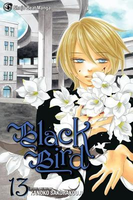 Black Bird, Vol. 13 by Kanoko Sakurakouji