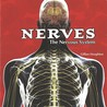Nerves: The Nervous System
