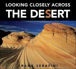 Looking Closely Across the Desert by Frank Serafini