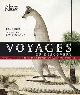 Voyages Of Discovery by A.L. Rice