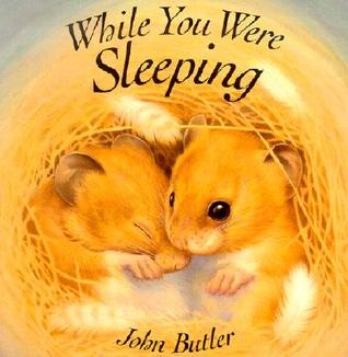 While You Were Sleeping by John Butler