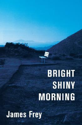 Bright Shiny Morning by James Frey