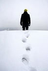 The Art of Walking in Snow