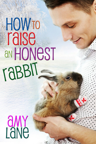 How to Raise an Honest Rabbit (Knitting, #3)