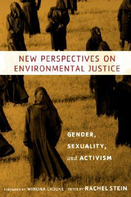 New Perspectives on Environmental Justice by Rachel Stein
