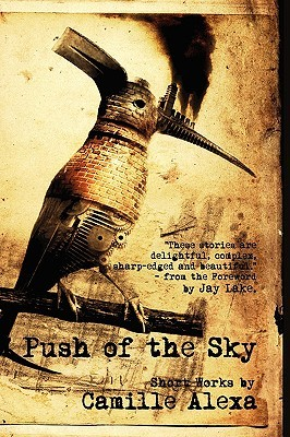 Push of the Sky by Camille Alexa