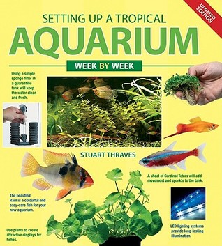 Setting up a Tropical Aquarium Week by Week