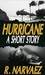 Hurricane - A Short Story