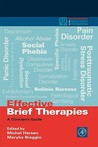 Effective Brief Therapies: A Clinician's Guide