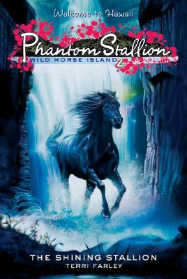 The Shining Stallion by Terri Farley
