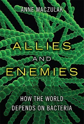 Allies and Enemies by Anne Maczulak