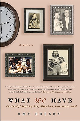 What We Have by Amy Boesky