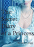 The Secret Diary of a Princess: a novel of Marie Antoinette