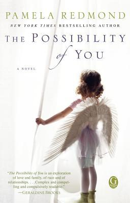 The Possibility of You by Pamela Redmond Satran