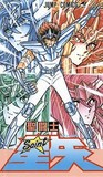 Knights of the Zodiac, Volume 19 (Saint Seiya): 108 Stars of Darkness