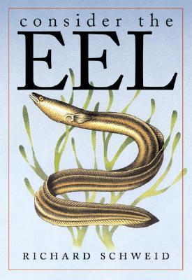Consider the Eel by Richard Schweid
