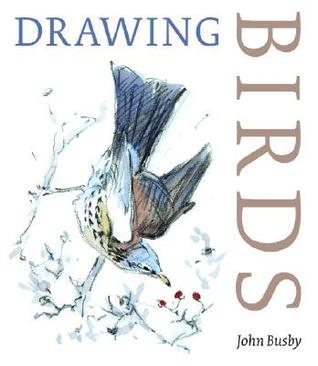 Drawing Birds by John Busby