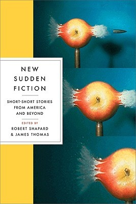 New Sudden Fiction by Robert Shapard