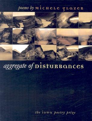 Aggregate of Disturbances