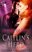 Caitlin's Hero by Donna  Gallagher