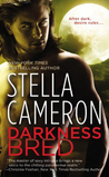Darkness Bred (Chimney Rock, #2)