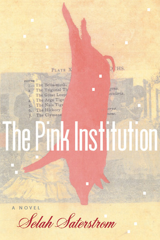 The Pink Institution by Selah Saterstrom