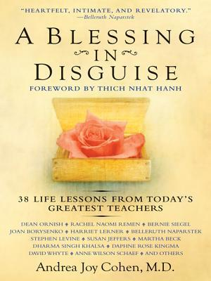 A Blessing in Disguise by Andrea Joy Cohen
