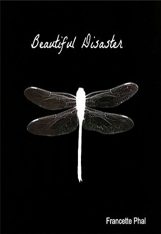 Beautiful Disaster (The Bet #1)
