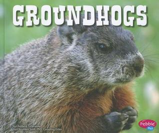 Groundhogs, The* Groundhogs - Solid