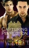 Capturing Perfection (Perfect Love Series, #3)