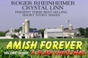 A Plain Christmas (Amish Forever, #3)