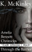 Through the Barrier (The Amelia Bennett Chronicles, #2)