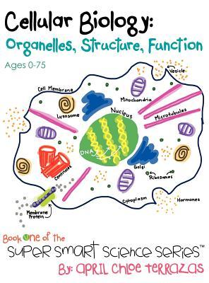 cellular organelle structure and function Cell organelles worksheet  or organelle in the right hand column that matches the structure/function in the left  to cell organelles worksheet key.