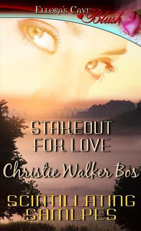 Stakeout for Love by Christie Walker Bos