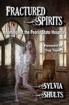 Fractured Spirits by Sylvia Shults