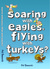 Soaring with Eagles, Flying with Turkeys? An inspirational journey of travel and adventure, helping others across the world