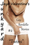 "Junkyard: Gay Bordello Stories: #2 ""Twins"""