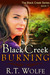 Black Creek Burning (Black Creek, #1)