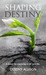 Shaping Destiny by Destiny Allison