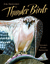 Thunder Birds: Nature�s Flying Predators