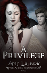 A Privilege (The Angel Chronicles, #3)