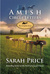 Amish Circle Letters: The Complete Series (Amish Circle Letters #1-10)