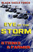 Eye of the Storm (Black Eag...