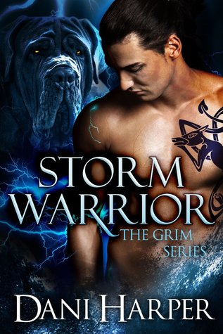 Review: Storm Warrior by Dani Harper