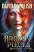 The Broken Pieces (The Paladins, #4)