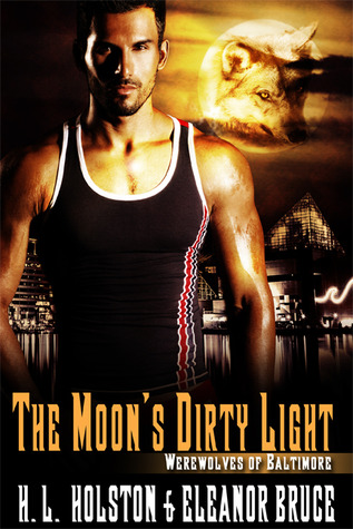 The Moon's Dirty Light