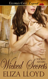 Wicked Secrets (Wicked Affairs, #4)