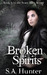 Broken Spirits (Scary Mary,...