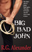Big Bad John by R.G. Alexander